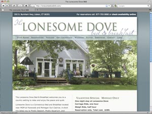 www.lonesomedovebnb.com home page